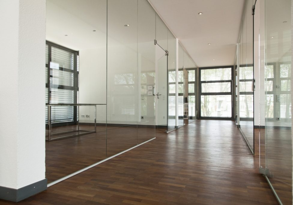 frameless-glass-systems-1024x683